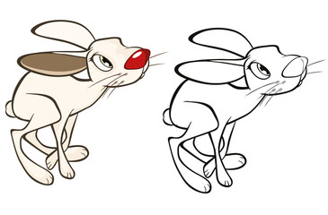 Vector Illustration of a Cute Rabbit. Cartoon Character. Coloring Book