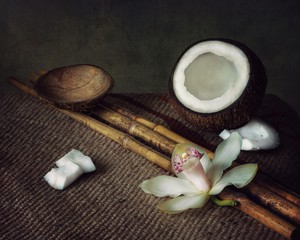 Still life with coconuts and orchid flower