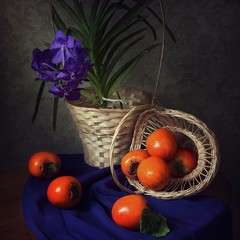 Still life with orchid flower and persimmon