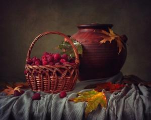 Still life with raspberry basket
