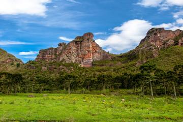 Pedra da Aguia mountain with forest, grass field and blue sky, Urubici, Santa Catarina
