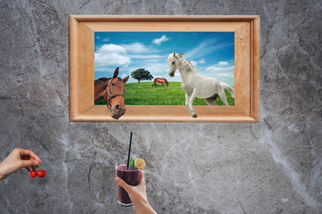 Two horses getting out of a picture frame while being offered with fruit and drinks by someone's hands