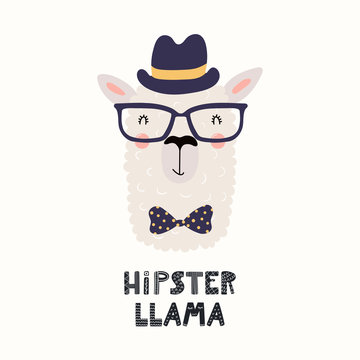 Hand drawn vector illustration with cute funny llama in a hat, bow tie, glasses, with text Hipster llama. Isolated objects on white background. Scandinavian style flat design. Concept for kids print.