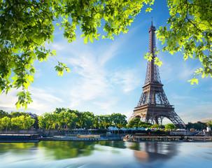 Wall Mural - Majestic Eiffel Tower