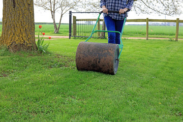 lawn roller rolling out uneven ground
