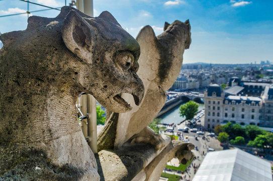 Notre-dame gargoyles, city in background