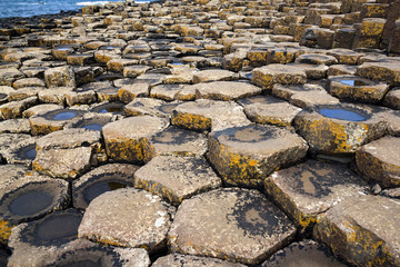 Basalt rock details at Giant's Causeway, Antrim, Northern Ireland