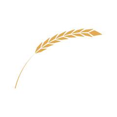 Cereal ear simple icon in flat style isolated on white background - ripe yellow wheat spike. Vector illustration of grain plant - element for bakery, organic farming food or beer design.