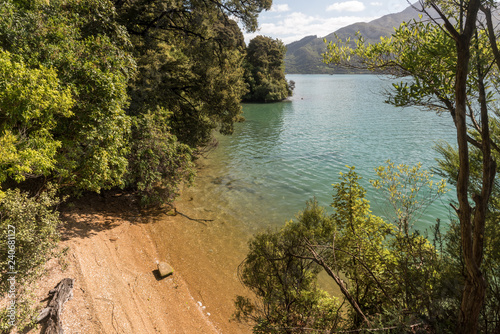 Secluded, sandy beach surrounded by forest on Kenepuru Sound