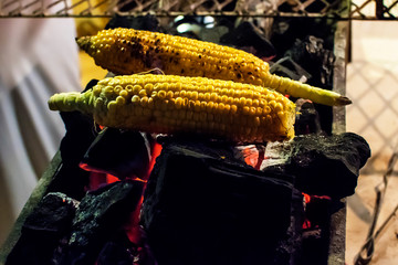 Cooking corn on an open fire. Picnic on the air.