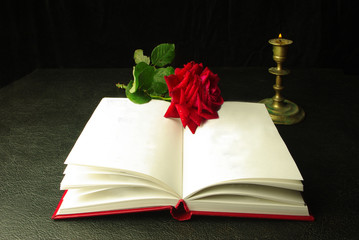 Book of poetry and red rose on a black background