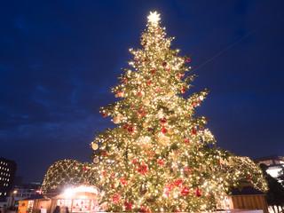 Fototapete - クリスマスツリー