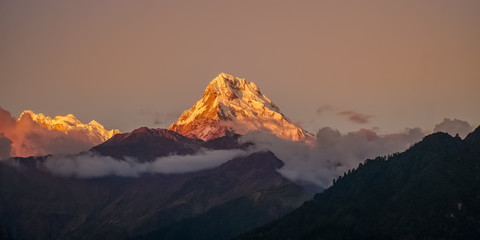 Foto op Plexiglas Ochtendgloren Snow Peak of Annapurna Mountain at Sunrise among Clouds in the Himalayas in Nepal
