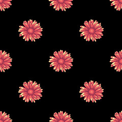 Seamless pattern with pink and orange daisy flowers on black background