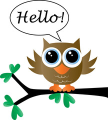 sweet little brown owl says hello