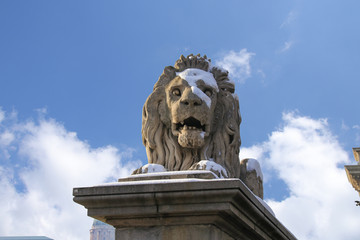 Lion sculpture on the Szechenyi Chain Bridge in Budapest - Hungary in winter