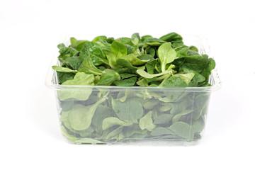 Eine Portion Feldsalat