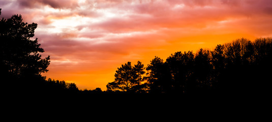 dark silhouette of a forest landscape at sunset, sundown giving a colorful glow in the sky and clouds