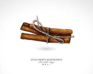 Illustration of cinnamon sticks drawn by hand on a white background. Bound cinnamon painted with colored markers like watercolor.