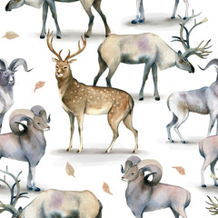Seamless animal pattern, Watercolor background of stag, deer and mutton on white.