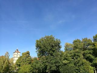 Alter grüner Baumbestand mit dem Turm von Schloß Brake im Hintergrund vor blauem Himmel im Sommer in der alten Hansestadt Lemgo bei Detmold in Ostwestflaen-Lippe