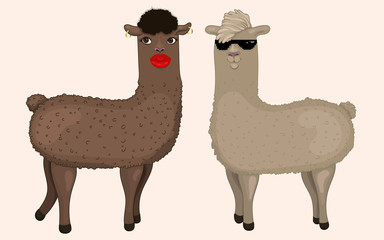 Hand drawn illustration of two cute llamas in cartoon style. Stylized brunette and blonde alpacas isolated. Creative characters with accessories. Funny view on wildlife. Ideal for any design.
