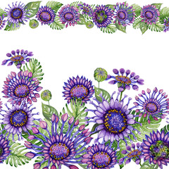 Beautiful African daisy flowers with exotic leaves in straight lines on white background. Seamless floral pattern. Hand painted watercolor illustration