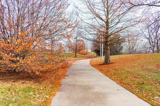 Autumn Trail near Soldier Field and Burnham Harbor in Chicago