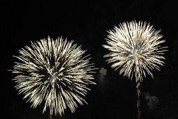 Firework details when exploding.