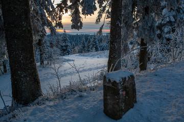 Winterwald bei Sonnenuntergang