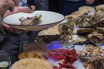 Plates with oysters in the hands of visitors