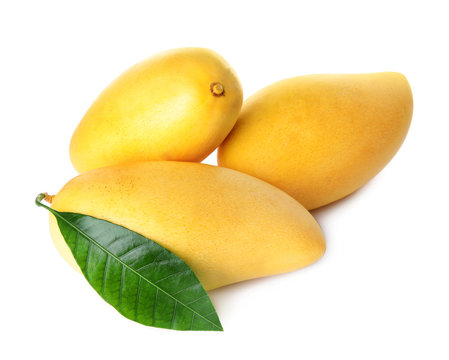 Fresh ripe mango fruits isolated on white