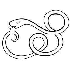 Cute black white snake