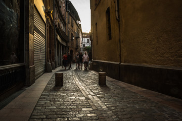 Fotomurales - Cityscapes of the French city of Toulouse