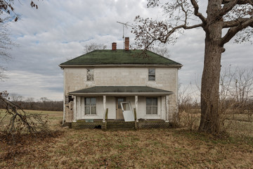 Vintage farmhouse abandoned with barren tree