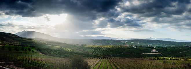 Green Fields Crete Greece Europe