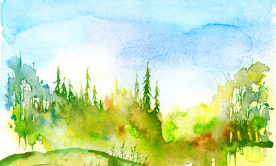 Watercolor coniferous forest, fir, pine, cedar. Vintage illustration of green. Watercolor countryside landscape. Abstract splash of paint.