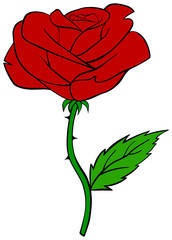 Cartoon red rose.