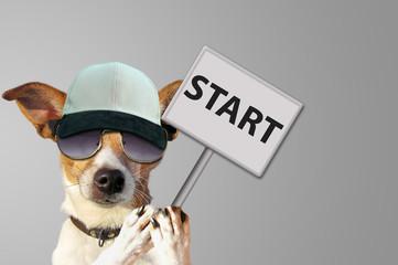 Start - Hund mit Schild