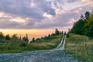 Offroad path in the mountain forest with the beautiful colorful sunset Wall mural