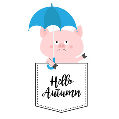 Hello autumn. Pig face head in the pocket. Umbrella. Cute cartoon animals. Piggy piglet character. Dash line. White and black color. T-shirt design. Baby background. Flat design.