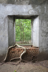 ancient brick window with nature and old concrete stone wall surrounding with tree roots  outside view in historical temple for poster announcement