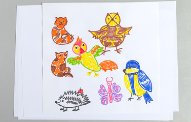 Kid drawings set of different wild animals birds and insects.