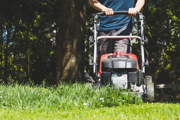 Mowing the grass with a lawn mower in garden at springtime