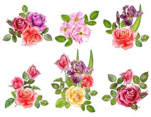watercolor drawing roses