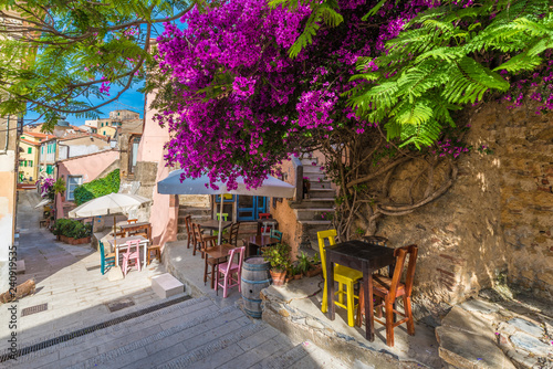Wall mural Street with flower on Capoliveri village in Elba island, Tuscany, Italy, Europe