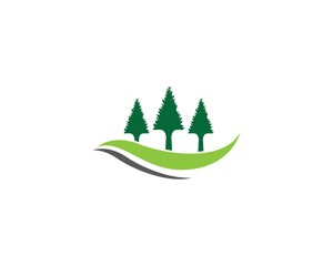 Pine tree icon illustration