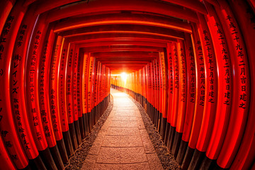 Torii gates in Fushimi Inari Shrine, Kyoto, Japan
