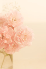 blooming rose flowers - wedding, holiday and floral garden styled concept