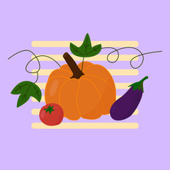Pumpkin, tomato and eggplant in cartoon style. Vector illustration.